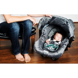 Carseat Canopies